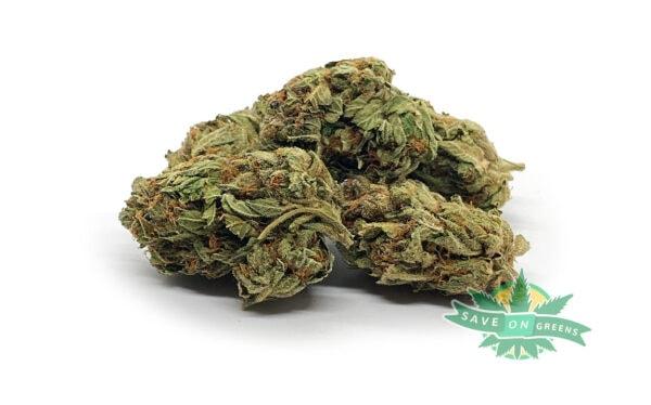 Pine Tar Bulk Buy weed online canada