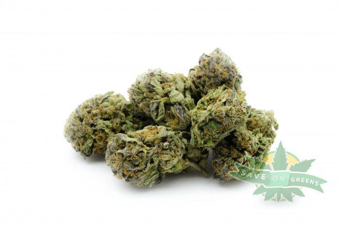 Commatose multi Cheap Weed