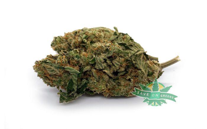 Grapefruit (AA) Weed online